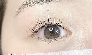 메이드제이 thumbnail image